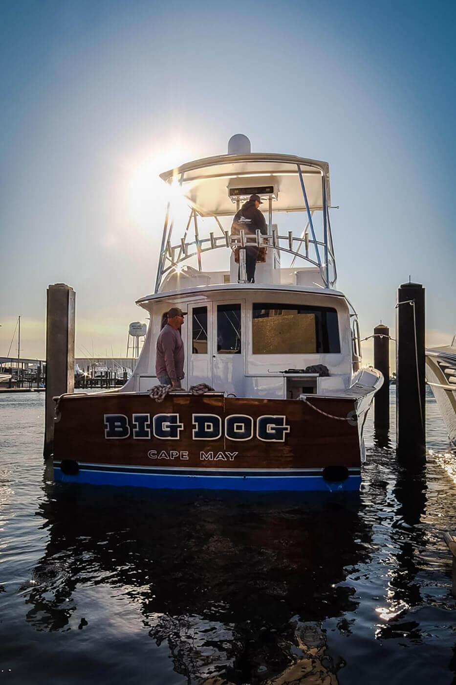 Big Dog Cape May Boat Transom